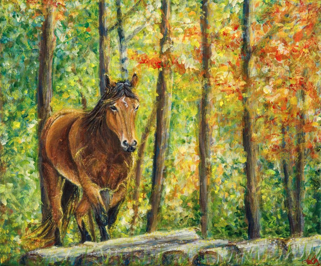 Horse in autumn light