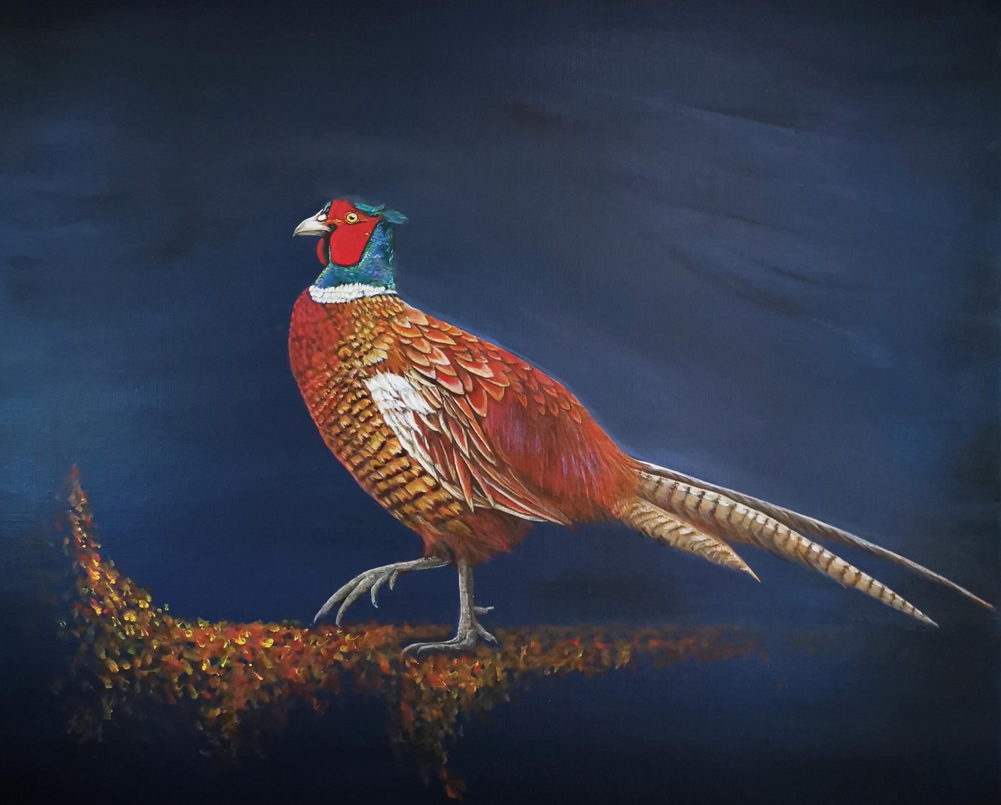 Proud Pheasant